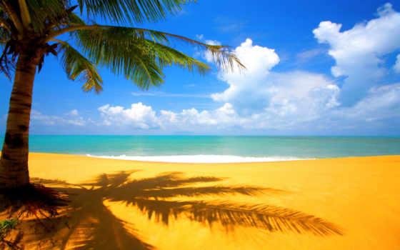 summer, desktop, free