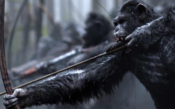 trailer, обезьян, планеты, дек, sign, war, tweets, сегодня, twitter, timeline,
