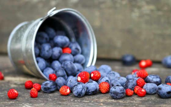 черника, ягоды, клубника, ведерко,
