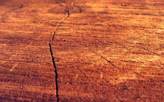 color, log, madera, главное, фон, tienda, wood, colores, desktop, para,