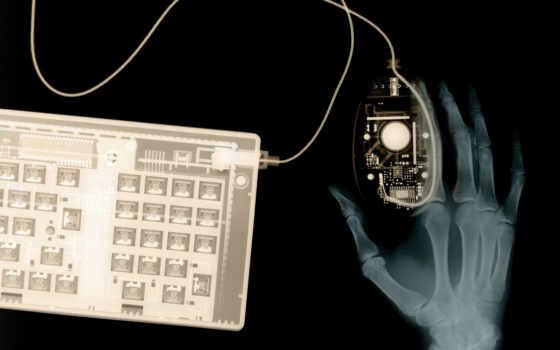рентген, мышь, клавиатура, рука, кости, funny