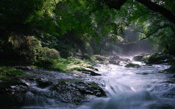 лес, скалы, водопад