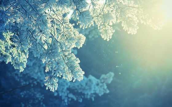 winter, снег, осень, уже, скоро, то, красавица, rullis, чародейка, янв, свет,