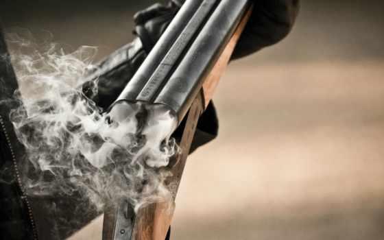 guns, поларайт, polaryte