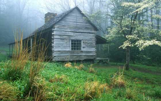 lodge, лесу, свой