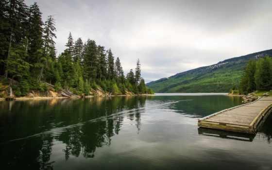 река, канадский, причал, лес, природа, мост, pier,