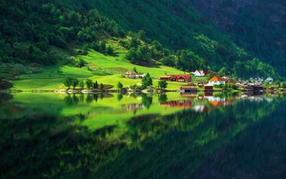 природа, деревня, зелёный