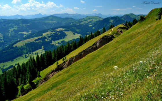 mountains, hills, paisagens, tapety, лес, full, pulpit,