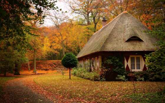 осень, lodge, красивые, осеннем, лесу, landscape, oboi, парке, tochka,