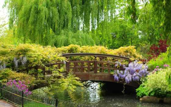 природа, широкоформатные, trees, мост, cvety, park, бесплатные, кусты,