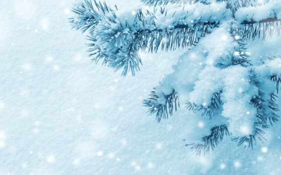 снег, winter, красавица Фон № 53103 разрешение 4893x3247