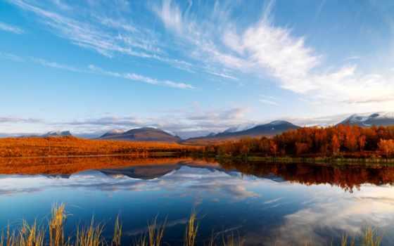 лес, озеро, природа