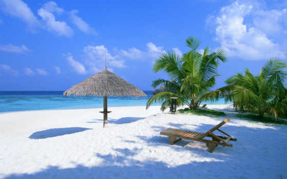 summer, пляж, ocean, песок, балдахин, шезлонг, bahamas, пальмы,