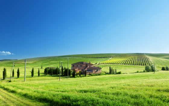 поле, house, trees, столбы, трава, дорога, недвижимость, виноградники, пастбища, зелёная, небо,