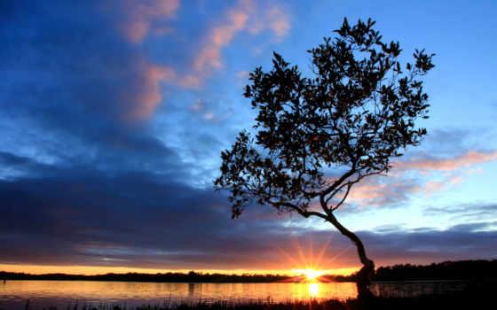 небо, облака, утро