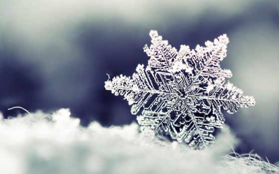 снежинка, снег, winter