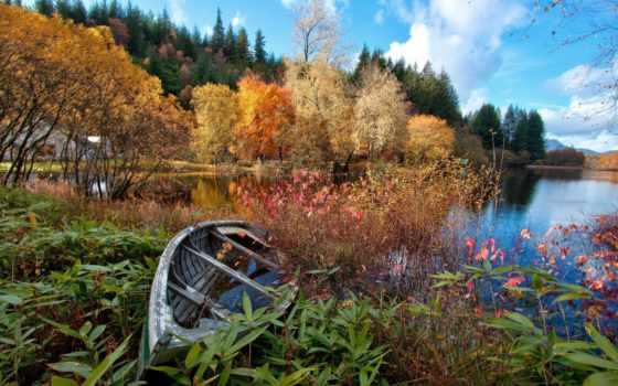 осень, природа, лодка, озеро, лес, река, trees, пейзажи -,
