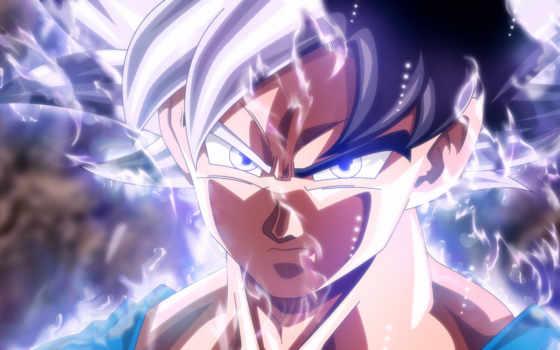 ultra, goku, instinct, mastered, дракон, мяч, anime, супер,