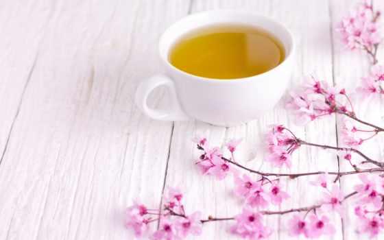 cup, coffee, лепестки, чая, столик, wooden, white, использование, branch, cherry