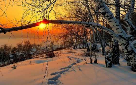 winter, снег, рассвет