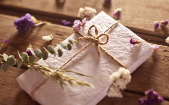 цветы, растения, полевые, конверт, доски, веревка,