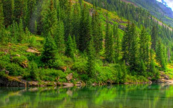 лес, горы, лесу, природа, пейзажи -, озеро, full, click, зелёный, one,
