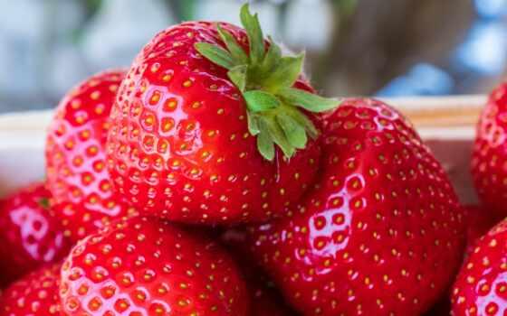 клубника, плод, спелый, фото, ягода, fresh, растение, который, age, pixabay