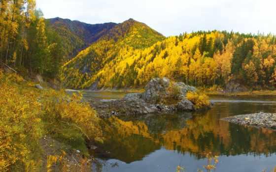 сибири, пейзажи -, trees, кухни, отдых, великолепные, страница, природа, россии,
