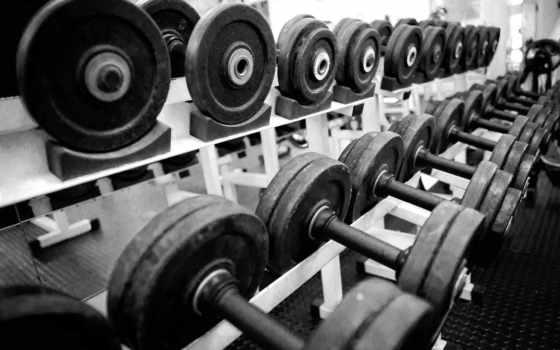 gym, скамейка, гантели