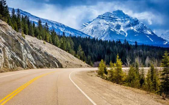 канада, альберта, park, уровень, national, jasper, птичий, ворошить, landscape,