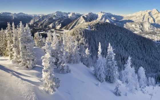 канада, ecran, fond, fonds, neige, sur, канадский, hiver, природа, banff,