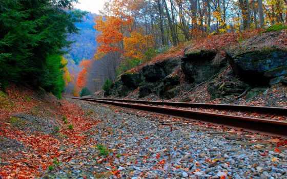 железная, дорога, осень, уходит, вдаль, лес, природа,