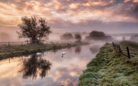 туман, рассвет, trees, трава, забор, со, река, лебеди, рекой, природа,