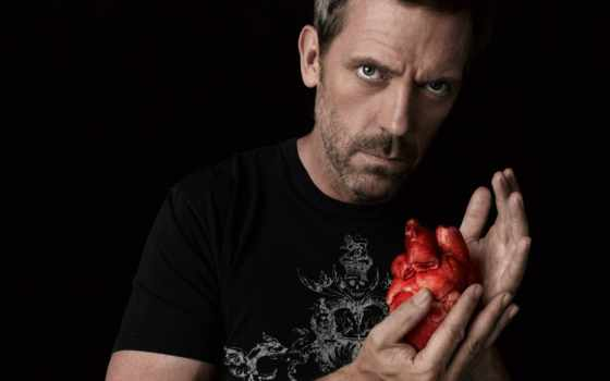 haus, доктор, сериала, house, everything,