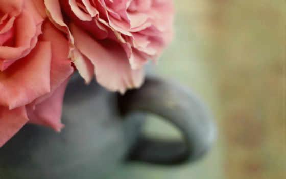 цветы, дата