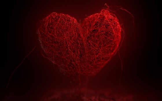 сердце, widescreen, desktop