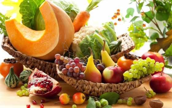 виноград, осень, яблоки, тыква, производить, фрукты, гранат, капуста, груши, хурма, морковь,