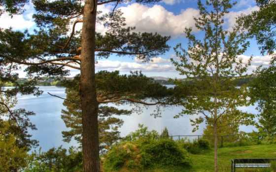 norwegian, скамейка, река