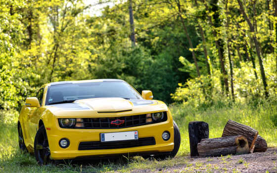 camaro, chevrolet, yellow