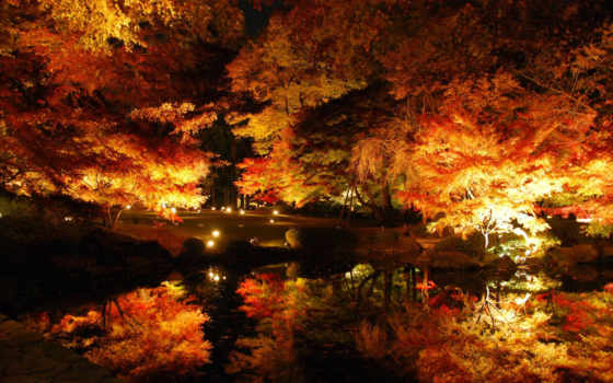 ночь, осень, осени