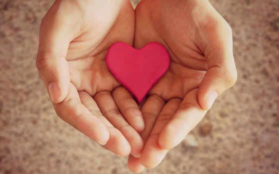сердце, девушка, настроения, руки, рука, руках, держит, love,