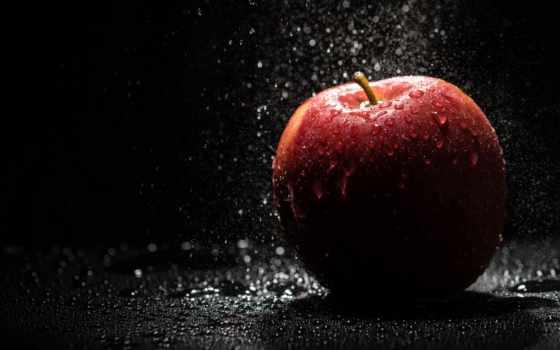 life, еще, apple, photography, живопись, рамочка, you, плод,