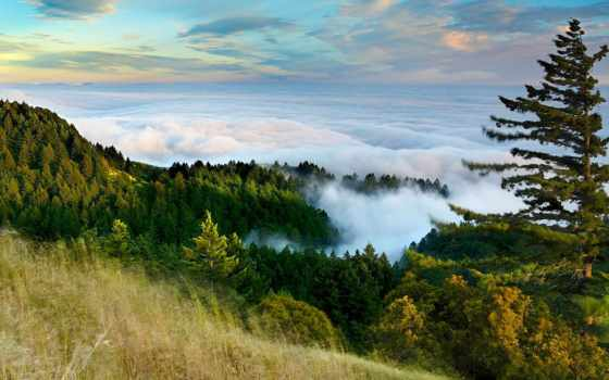 уезд, marin, tamalpais, california, mt,