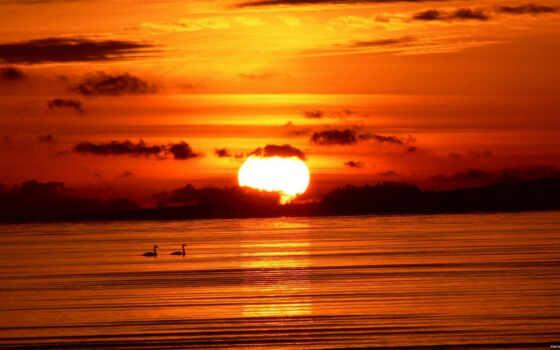 закат, небо Фон № 17002 разрешение 1920x1200