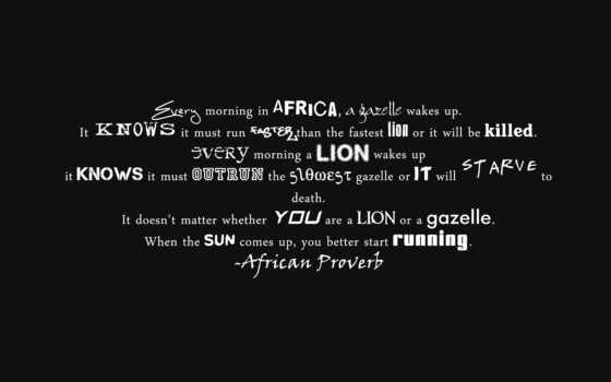 running, african, proverb, facebook, африканская, притча, quotes, lion, funny, duvar, morning, gazelle, run,