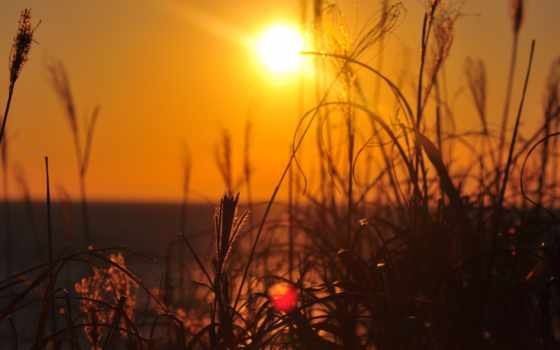 природа, sun, landscape, трава, rays, серьги, фотографий, архиве, разрешений,