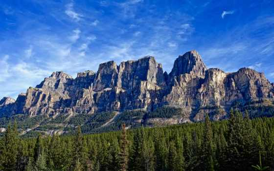 гора, wyoming, mountains, лес, скалистый, серый,