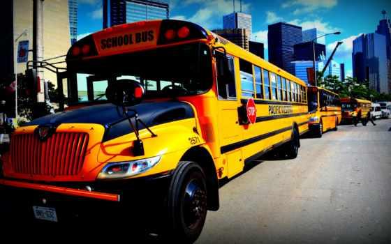 school, bus, cover