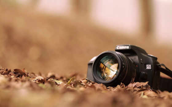 фотоаппарат, canon, высоком, качестве, базе,