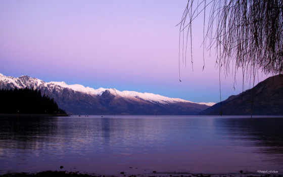 violett, hintergrundbild, fotos, reservoir, лес, фиолетовый, первую, frei, beyond,